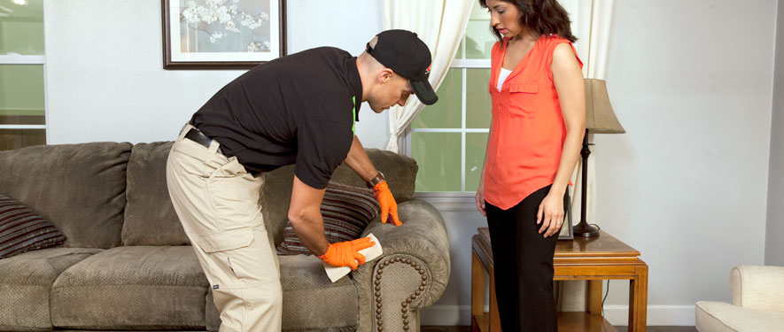 Morristown, TN carpet upholstery cleaning